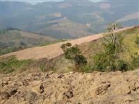 fazenda Cerro Azul Pr 40 alqueires