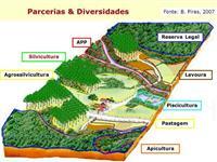 Gestão e administração de sitios e fazendas sem custo