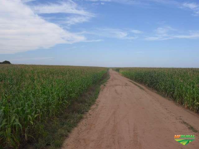 Fazenda de 3.000 ha para plantio em Nova Ubiratan-MT.