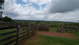 Fazenda em Paragominas, Pará
