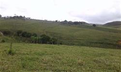 Excelente  fazendinha  17 Hectares município de J. Gomes -R$ 300.000,00