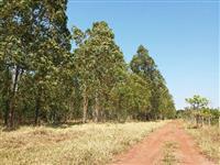 Fazenda em Uberlândia/MG, Distância: 27km de Asfalto + 10km de Estrada de Terra.