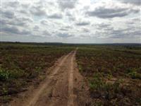 Fazenda 100% Plana para Agricultura