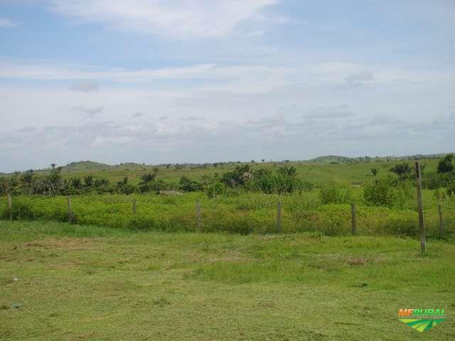 Fazenda Jacundá