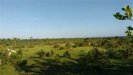 Fazenda em Paragominas