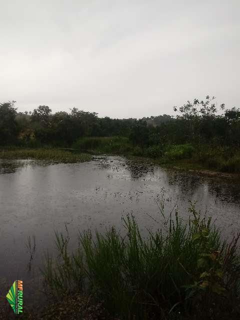 Fazenda a 13km do centro de Bom Despacho/MG