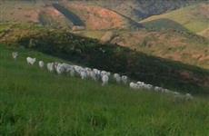 Linda fazenda em Paraíba do Sul-Rj