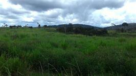 Fazenda estado do Pará - aceita permuta