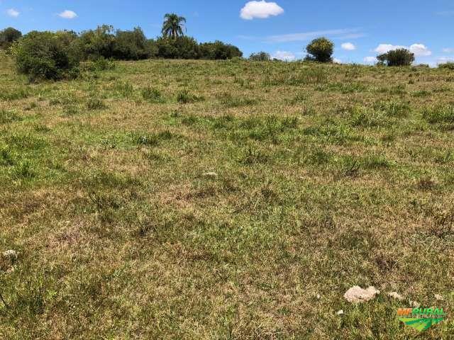 Fazenda em Santana da Boa Vista-RS de 45 ha pecuária e/ou soja