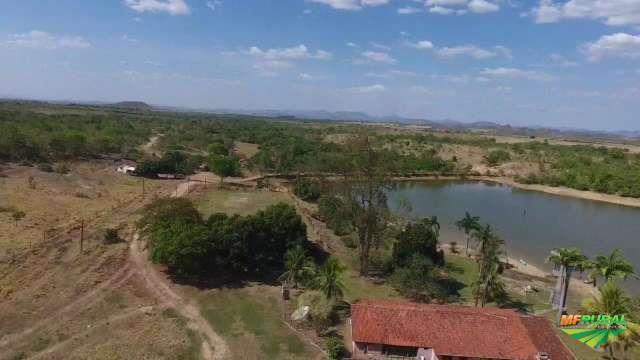 Linda Fazenda em Niquelândia