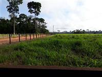 Fazenda no Município de Senador José Porfírio -PA