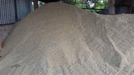 Serragem Seca (pó de serra)