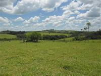 Fazenda de 94 alqueires Paulista em carlópolis Paraná