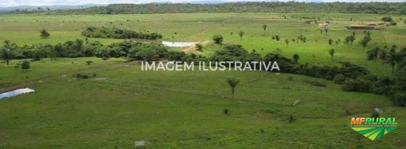 Fazenda com 7.500 ha interior de Mato Grosso