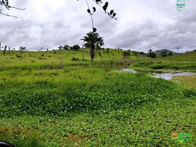 Gongogi. Fazenda de 314 Hectares, Ótimo para pecuária. Potencial para 600 cabeças de gado