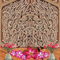 Sementes de Rosa do Deserto Adenium Obesum Mix de Cores