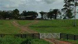 Fazenda em Bujari - Acre