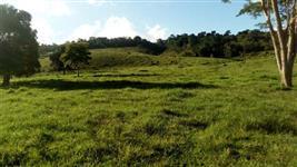 Fazenda 192ha com rio cortando propriedade