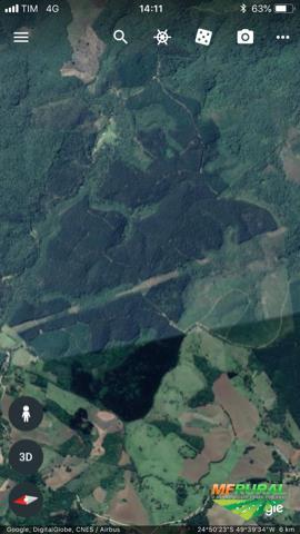 Fazenda de reflorestamento