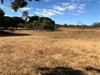 Fazenda no cerrado de Goiás