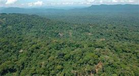 Reserva Legal para compensação - Bioma Mata Atlantica