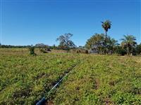 Fazenda 25 alqueiroes (4.84)