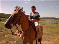 Arrendo fazenda  campo arável fertil próprio para criação de gado e plantas