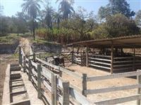 Fazenda pra Gado em Esmeraldas/MG