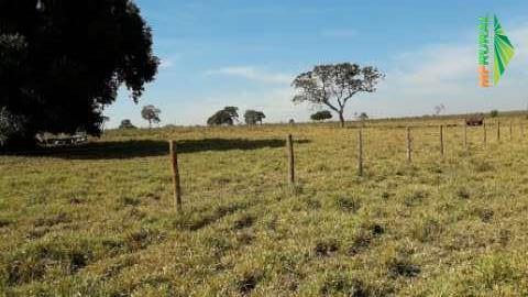 Fazenda Nossa Senhora de Fátima - Porteira fechada - Campo Grande