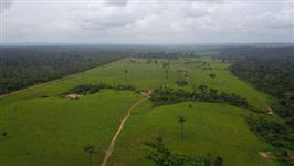 Fazenda 19.490 mil hectares, barbada de 1500 á Hec.