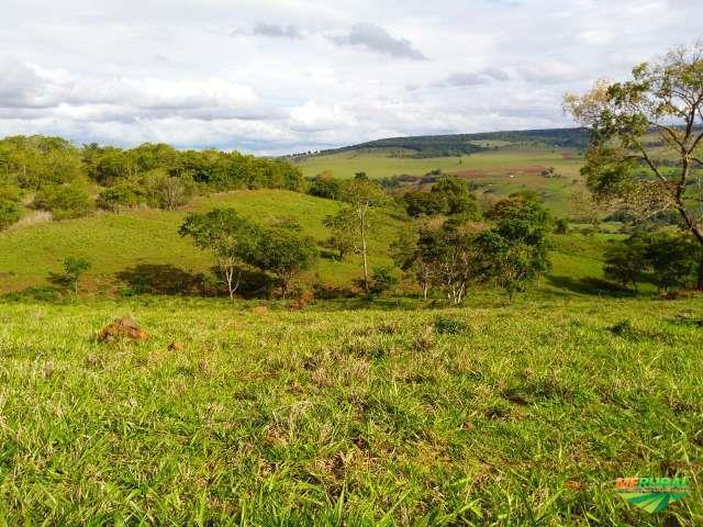 Fazenda Ribeirão da Mata