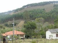 VENDO FAZENDA 128 HECTARES, 10 KM DE SÃO TIAGO MG.