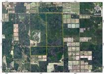 Fazenda - Vendo em Chaco Central, Paraguay