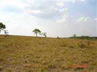 Fazenda Rica em Quartzo no Tocantins