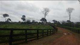 Fazenda 2.439 ha