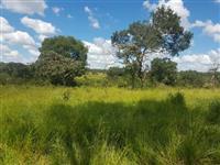 Fazenda de 30 Alqueires em Goiás
