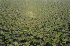Área para Compensação de Reserva Legal  Amazônia