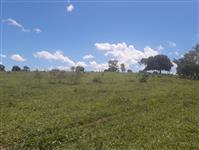 Fazenda em ProfessorJamil - Goiás