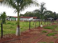 Fazenda em Parapeba rica em agua