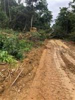 Área de chapada para plantar soja