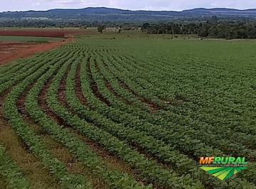 Permuta de Fazenda em DI ou Esmeralda