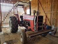 Trator Massey Ferguson 290 4x2 ano 89