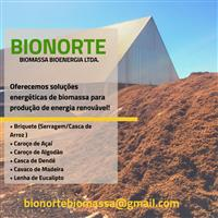 Caroço de Açaí - Biomassa