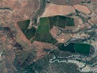 Fazenda 547 hectares