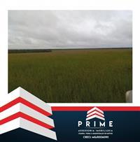 Vende-se fazenda 25.000 ha