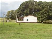 Vendo Fazendas p/ pecuária, plantação de soja e agricultura