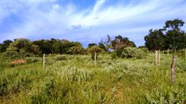 Fazenda a venda em Uberl�ndia, Tri�ngulo Mineiro, venda ou permuta