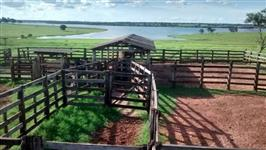 Fazenda beira de rio a venda em Iturama/MG