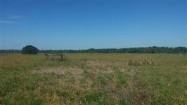 Fazenda a venda em Mato Grosso com 21.600 hectares