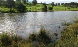 Sítio entre Uberlândia e Tupaciguara, rico em água, região Xapetuba